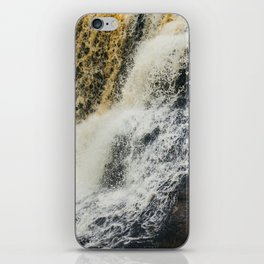 Laughing Whitefish iPhone Skin
