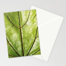 GREEN ORGANIC LEAF WITH VEINS DESIGN ART Stationery Cards