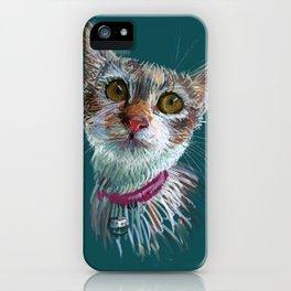 Tofu cat iPhone Case