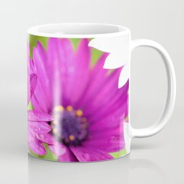 Morning Dew on Purple Daisies by Reay of Light Photography Coffee Mug