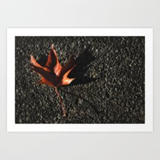 red leaf. Art Print