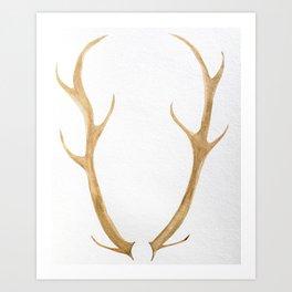 Northwoods Antlers Art Print