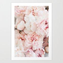 Flower Collection II Art Print