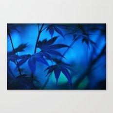 Floating Japanese Maple Canvas Print