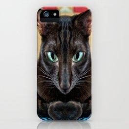 Sake, the Brown Oriental Cat iPhone Case