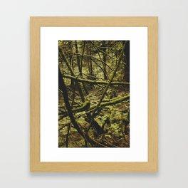 stanley park (4) Framed Art Print