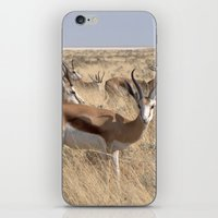 greg guillemin iPhone & iPod Skins featuring Springbok herd - Greg Katz by Artlala for MSF Doctors Without Borders