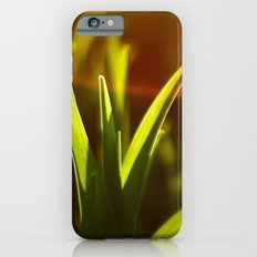 rays iPhone 6s Slim Case