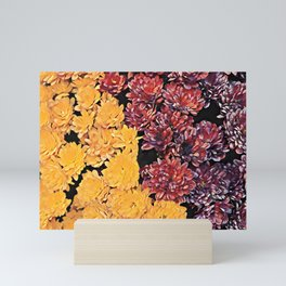 Two colors chrysanthemum floral arrangement Mini Art Print