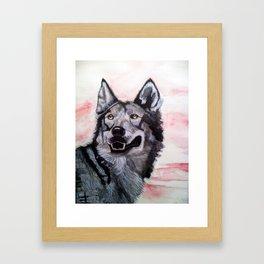 Wolf in Red Framed Art Print