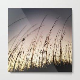 Sunset on Tybee Metal Print