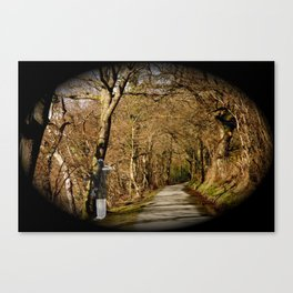 Spirit in the woods Canvas Print