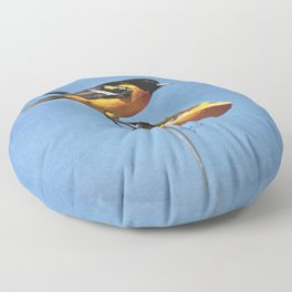 Good Morning Oriole Floor Pillow