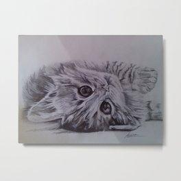 Cute little cat Metal Print