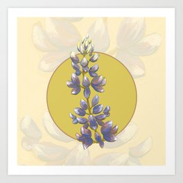 Arroyo Lupine -Calfornia Native Flower Art Print