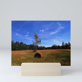 rural scene Mini Art Print
