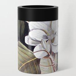 Vintage White Magnolia Can Cooler