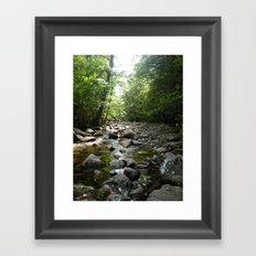 Stream scene Framed Art Print