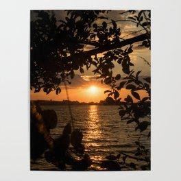 Framed sunset by trees Poster