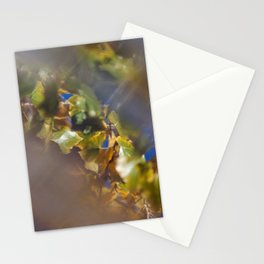 Green cottonwood leaves against blue sky, reflection in water on deck Stationery Cards
