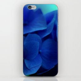 Pretty Indigo Hydrangea Flower  #decor #society6 #buyart iPhone Skin