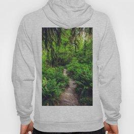 Rainforest Trail Hoody