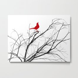 Jaunty Red Bird on Branch A533 Metal Print