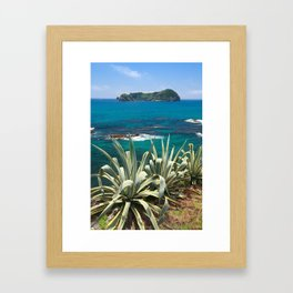 Islet and coastal vegetation Framed Art Print