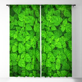 Deep Forest Leaves. Blackout Curtain