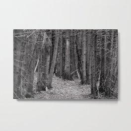 compression path Metal Print