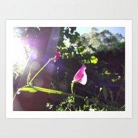 plain Art Prints featuring Plain Flower by Georgia Diment