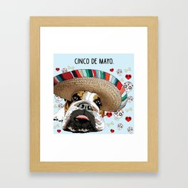 Cinco de Bulldog Framed Art Print