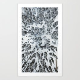 Snow covered forest from above in Austria Art Print