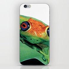 rana del madagascar iPhone & iPod Skin