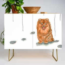 Pomeranian with balloons Credenza