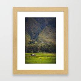 Asia 43 Framed Art Print
