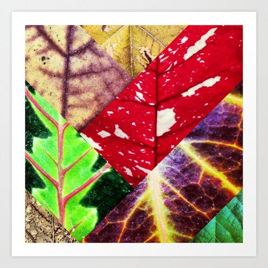 Leaf Collage Art Print