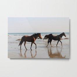 Wild Horse Herd 3 Metal Print