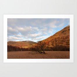 Cumbria nature Art Print