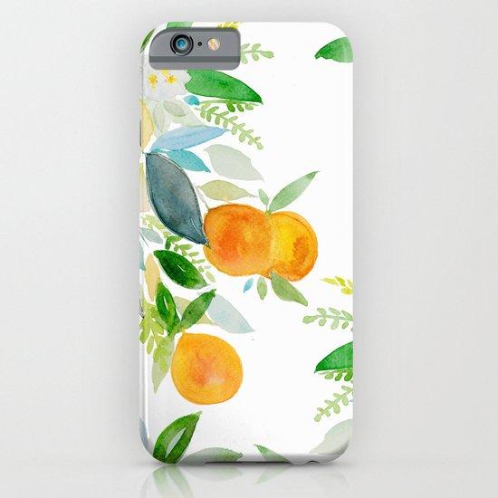 Citrus bouquet iPhone & iPod Case