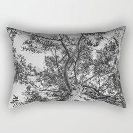 The old eucalyptus tree Rectangular Pillow