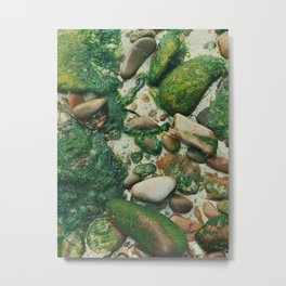 Moss-Covered Rocks in Isle of Skye, Scotland Metal Print