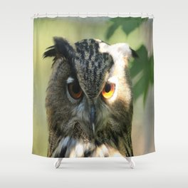 Owl in the light Shower Curtain