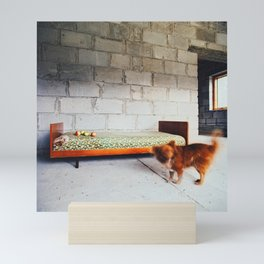 Four Apples and Red Dog, Color Film Photo, Analog Mini Art Print