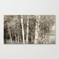 Birches monochrome Canvas Print