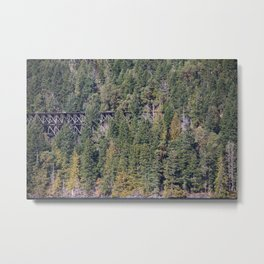 Hidden Trains Metal Print
