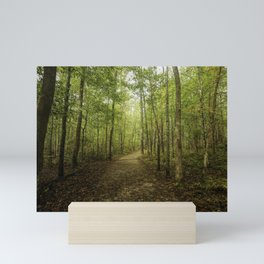 Trail To Elijah Oliver's Cabin Mini Art Print