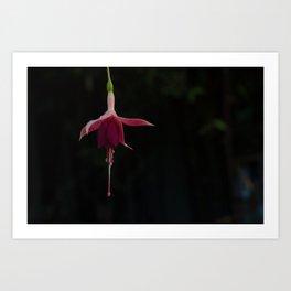 Dancing Ballerina Flower Art Print