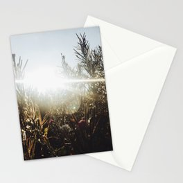 Running in the Fields Stationery Cards