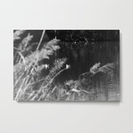 black and white country pond Metal Print